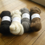 A variety of Shetland from Adelaide Walker