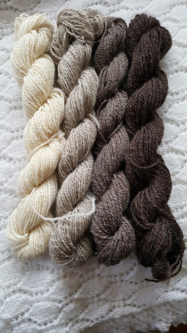 Masham fibre spun into a range of colours